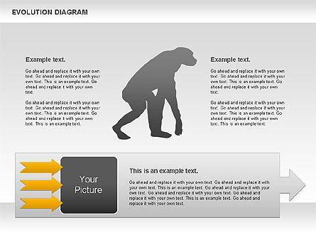 Evolution Diagram, Slide 2, 00934, Education Charts and Diagrams — PoweredTemplate.com