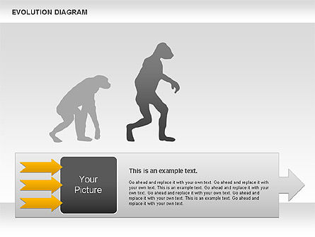 Evolution Diagram, Slide 3, 00934, Education Charts and Diagrams — PoweredTemplate.com