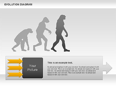 Evolution Diagram Slide 4