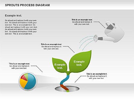 Sprouts Process Diagram, 00986, Process Diagrams — PoweredTemplate.com