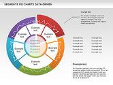 Data Driven Segments Pie Chart#2