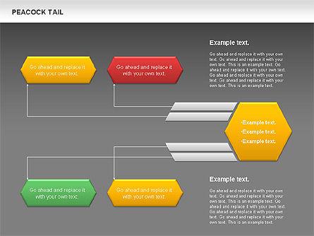 Peacock Tail Diagram, Slide 13, 01014, Business Models — PoweredTemplate.com