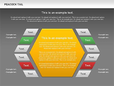 Peacock Tail Diagram, Slide 14, 01014, Business Models — PoweredTemplate.com