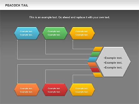 Peacock Tail Diagram, Slide 15, 01014, Business Models — PoweredTemplate.com