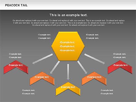 Peacock Tail Diagram, Slide 16, 01014, Business Models — PoweredTemplate.com