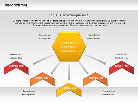Peacock Tail Diagram, Slide 5, 01014, Business Models — PoweredTemplate.com