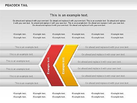 Peacock Tail Diagram, Slide 8, 01014, Business Models — PoweredTemplate.com