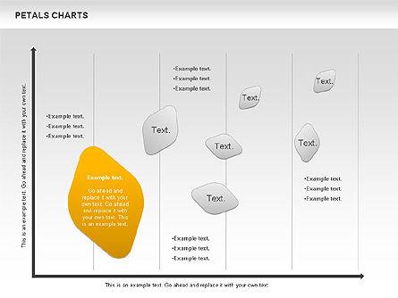 Petal Stages Diagram Slide 10