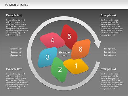 Petal Stages Diagram Slide 13