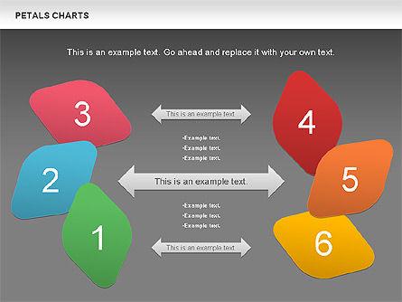 Petal Stages Diagram Slide 15