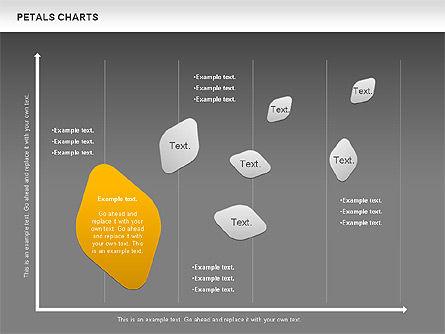 Petal Stages Diagram Slide 16