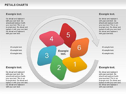 Petal Stages Diagram Slide 2