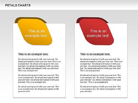 Petal Stages Diagram Slide 5