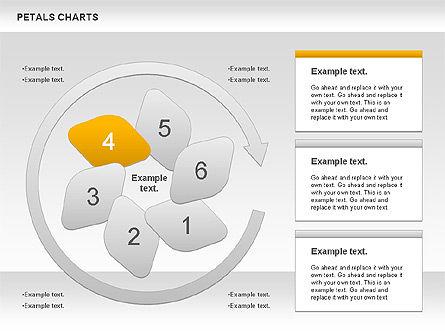 Petal Stages Diagram Slide 6