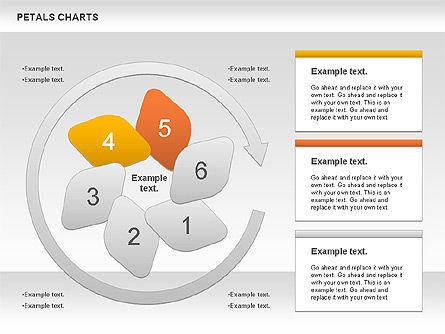 Petal Stages Diagram Slide 7