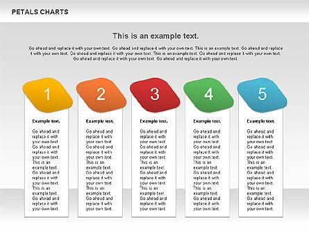 Petal Stages Diagram Slide 9