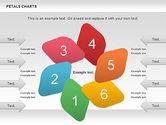 Petal Stages Diagram#1