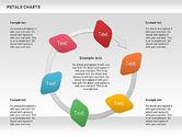 Petal Stages Diagram#11
