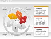 Petal Stages Diagram#8