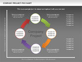 Company Project Diagram#15