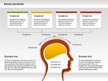 Brain Diagram, Slide 3, 01122, Business Models — PoweredTemplate.com