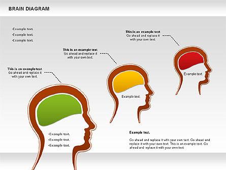 Brain Diagram, Slide 4, 01122, Business Models — PoweredTemplate.com