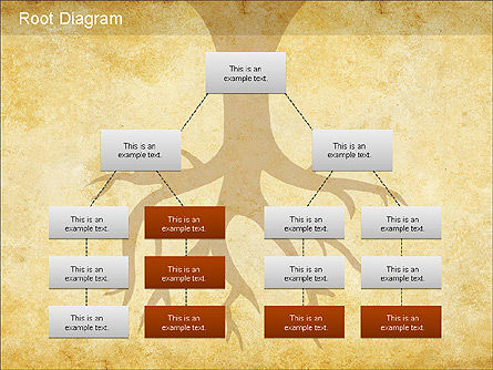 Root Diagram, Slide 2, 01168, Organizational Charts — PoweredTemplate.com