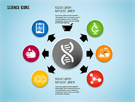 Icons: Science Process with Icons #01634