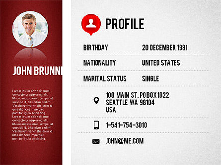 professional resume template slide 2