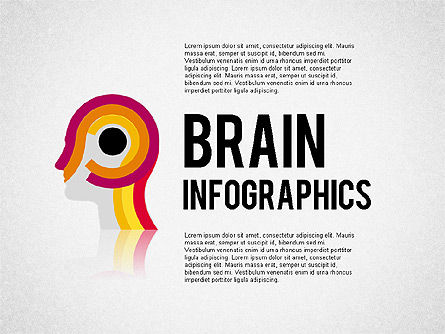 Stage Diagrams: Brain Infographics #02125