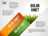 Presentation Templates: Business Stages and Options #02578