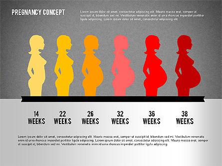 Pregnancy Presentation Concept, Slide 13, 02608, Medical Diagrams and Charts — PoweredTemplate.com