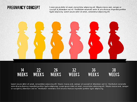 Pregnancy Presentation Concept, Slide 5, 02608, Medical Diagrams and Charts — PoweredTemplate.com
