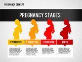 Medical Diagrams and Charts: Pregnancy Presentation Concept #02608