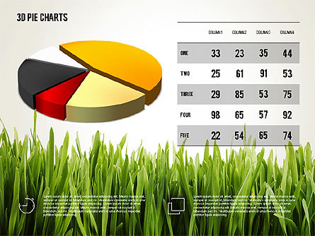 Presentation with Pie Chart and Table (data driven) Slide 3