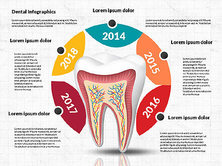 Dental Infographics, Slide 4, 02727, Medical Diagrams and Charts — PoweredTemplate.com