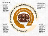 Coffee Bean Infographics#8