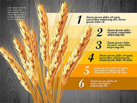 Agriculture Infographics Template, Slide 12, 02848, Infographics — PoweredTemplate.com
