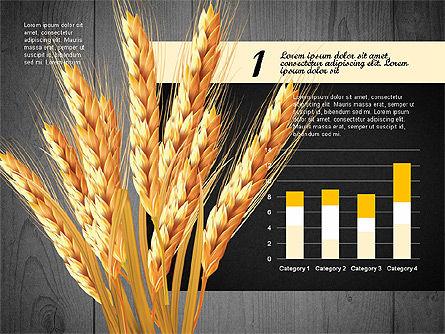 Agriculture Infographics Template, Slide 13, 02848, Infographics — PoweredTemplate.com