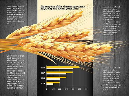 Agriculture Infographics Template, Slide 16, 02848, Infographics — PoweredTemplate.com