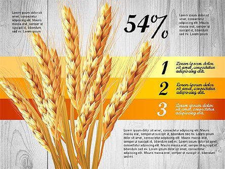 Agriculture Infographics Template Slide 2