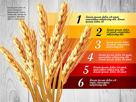Agriculture Infographics Template Slide 4