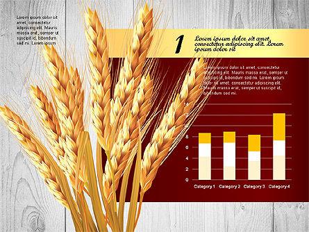 Agriculture Infographics Template, Slide 5, 02848, Infographics — PoweredTemplate.com