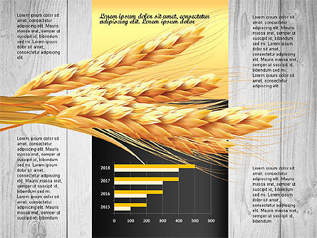 Agriculture Infographics Template, Slide 8, 02848, Infographics — PoweredTemplate.com