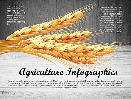 Agriculture Infographics Template, Slide 9, 02848, Infographics — PoweredTemplate.com
