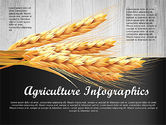 Infographics: Agriculture Infographics Template #02848