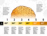 Medical Diagrams and Charts: 大脑流程和选项概念 #02887