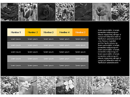 Data Driven Slides with Flowers, Slide 11, 03305, Data Driven Diagrams and Charts — PoweredTemplate.com