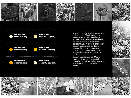 Data Driven Slides with Flowers, Slide 13, 03305, Data Driven Diagrams and Charts — PoweredTemplate.com