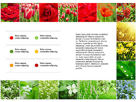 Data Driven Slides with Flowers, Slide 5, 03305, Data Driven Diagrams and Charts — PoweredTemplate.com
